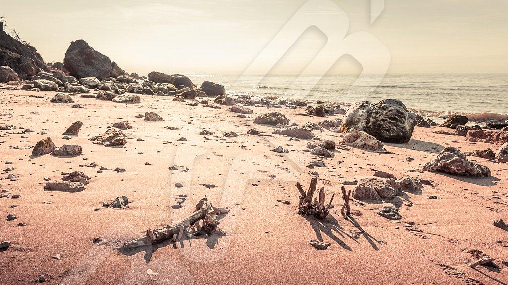 BabXIII-DSC01098.jpg
