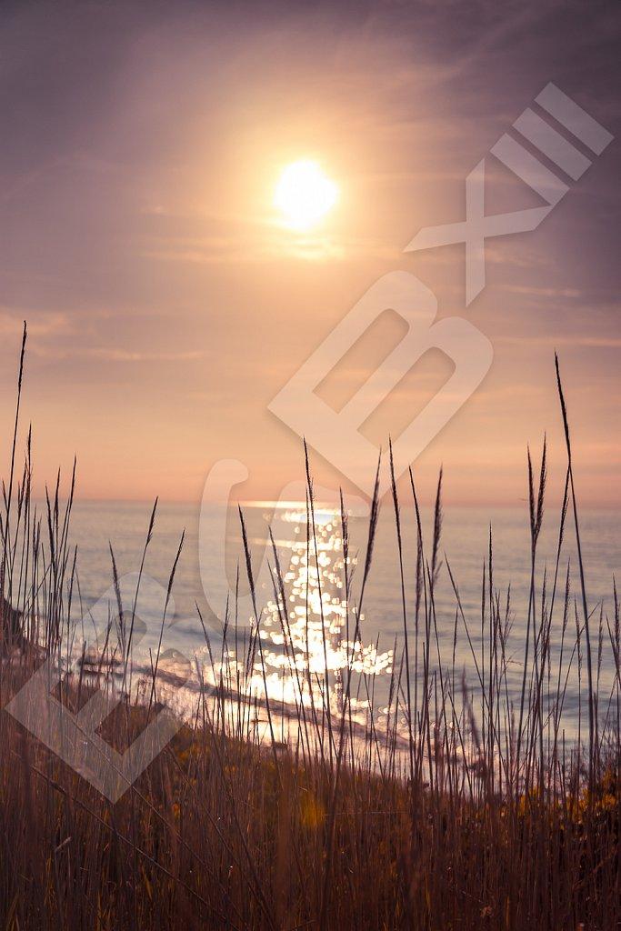 BabXIII-DSC01120.jpg