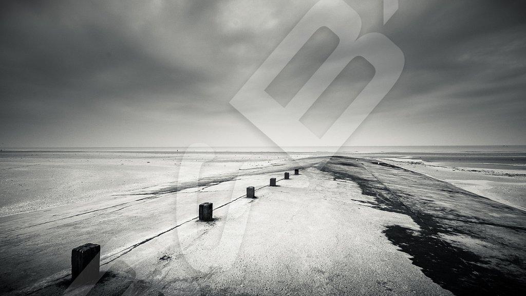 BabXIII-DSC00157.jpg